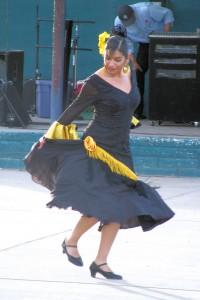 flamencosolo2