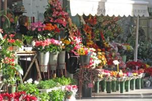 ramblasflowermarket